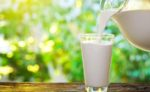 У 2018 році якість закупленого молока переробними підприємствами підвищилася