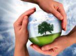 Чистота довкілля – справа кожного