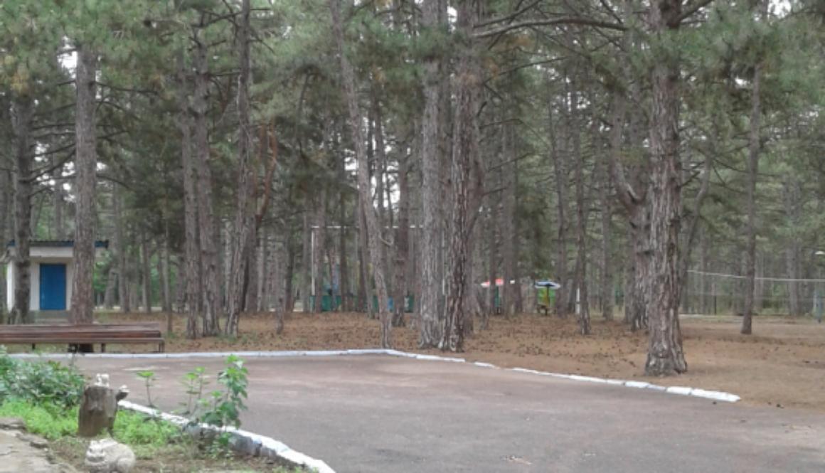 Комісійне обстеження дитячого оздоровчого табору «Орленок» Великоолександрівського району