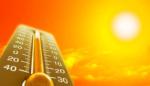 Як поводитися у спеку