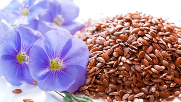 Нішеві культури: льон олійний