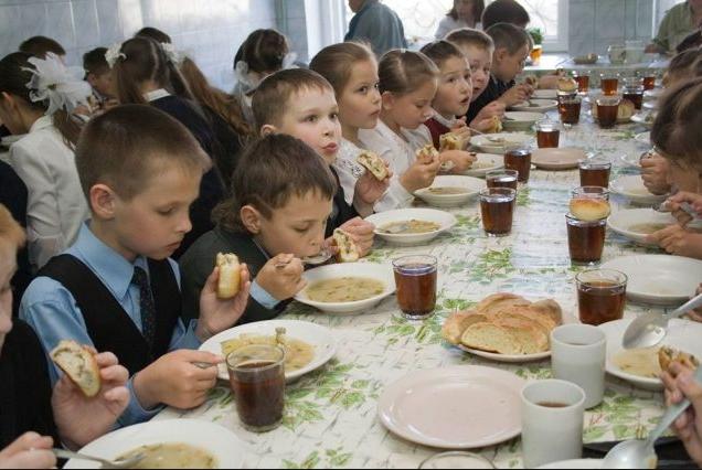 Харчування дітей у закладах освіти Горностаївського району  під контролем!
