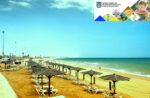 Про стан пляжів області