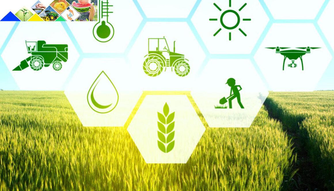 Нарада з сільгоспвиробниками Високопільської селищної ради та Кочубеївської сільської ради об'єднаних територіальних громад