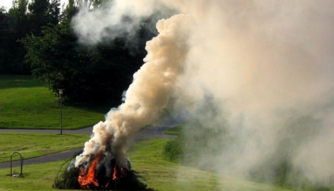 Спалювання листя та сухої трави – поза законом