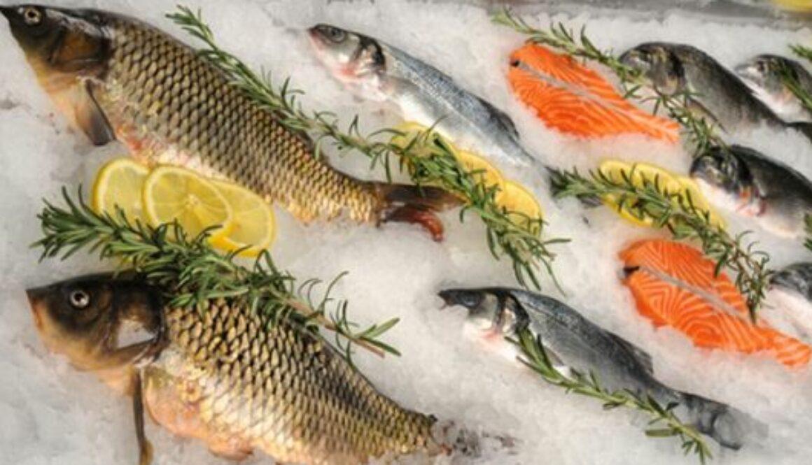 Причини захворювання риб та як убезпечити себе від покупки неякісної риби